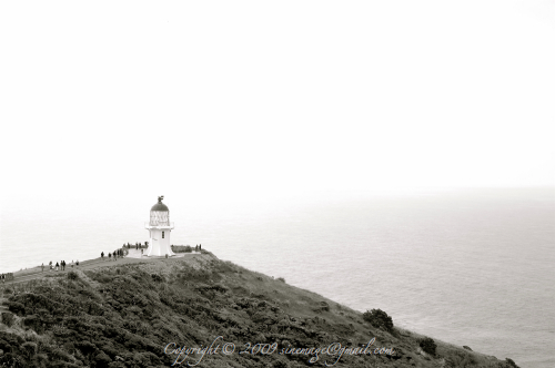 Lighthouse Cape Reinga Northland New Zealand