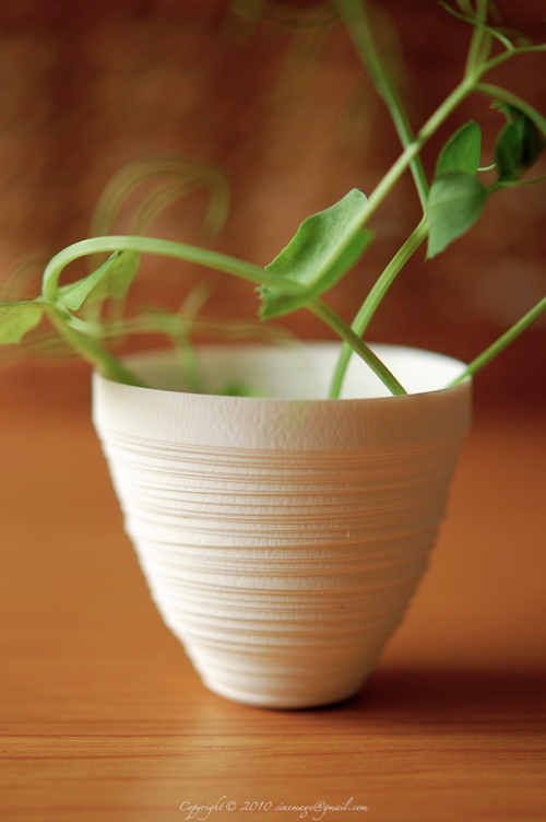 Sinemage Paper Ceramic Cup