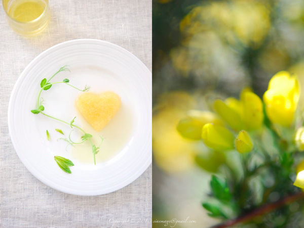 Sinemage Heart shape Gorse flower granita
