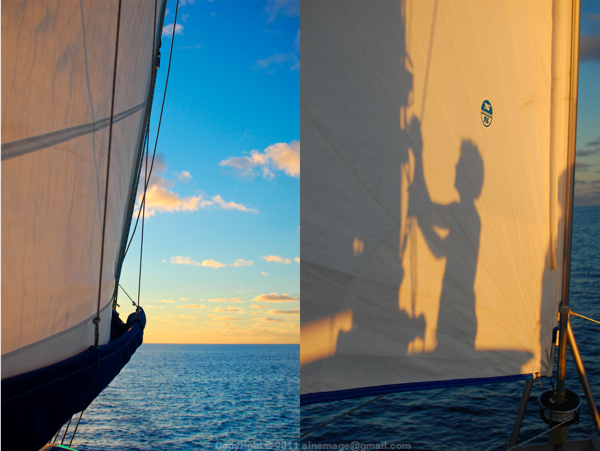 Sinemage Sail and sunset light