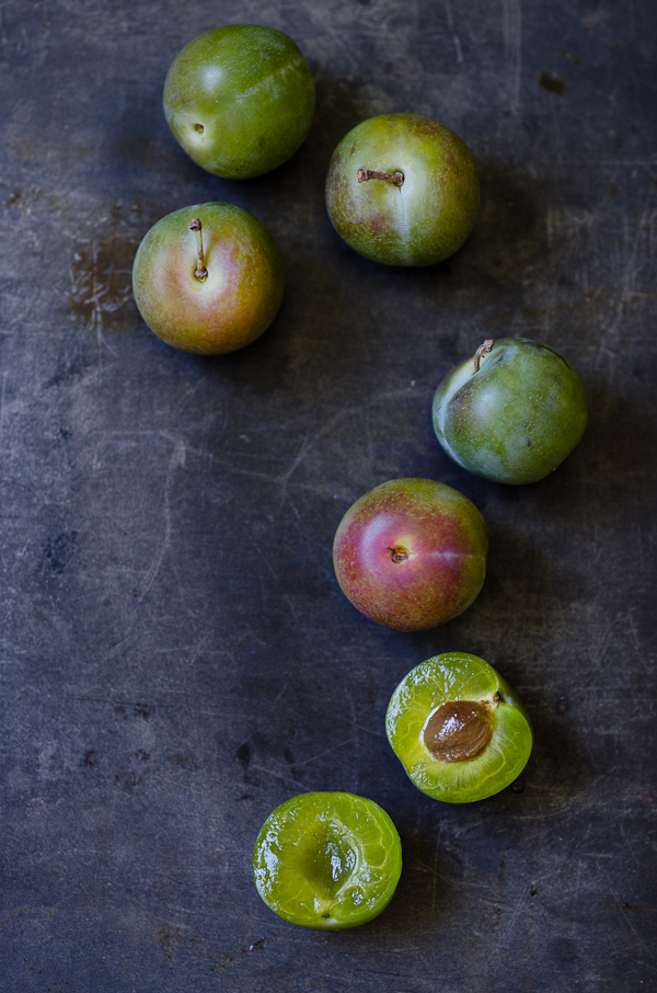 Greengage | At Down Under | Viviane Perenyi