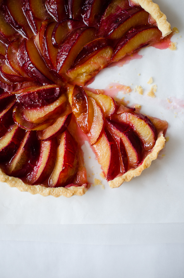 Plum Tart | At Down Under | Viviane Perenyi